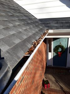 Gutter_Cleaning_Ashland_VA_23005