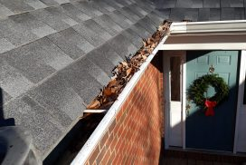 Gutter Cleaning before In Ashland, VA 23005